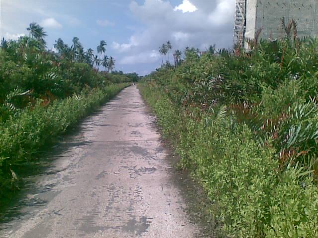 Jalan sepi Tanjung Samak.jpg