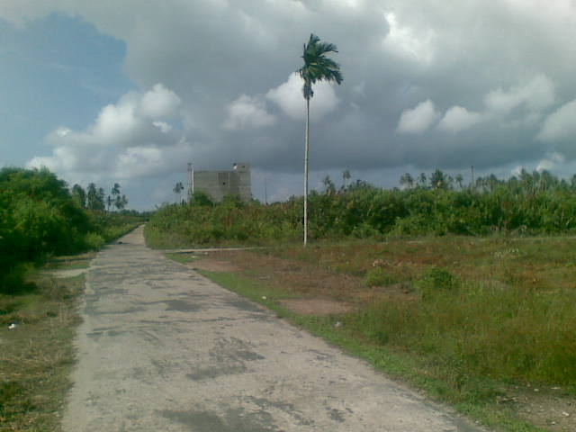 Persimpangan Tanjung Samak.jpg